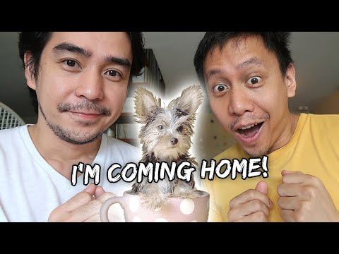 Opening A New MYSTERY Balikbayan Box (Most Random Contents Ever) | Vlog #767 from YouTube · Duration:  17 minutes 52 seconds