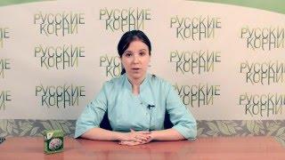 Валерьяна - применение и показания. Купить валерьяна корень в фито-аптеке «Русские корни»