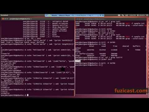UNIX-1.8 ps, netstat, kill, pidof, fuser, awk commands (Video Tutorial)