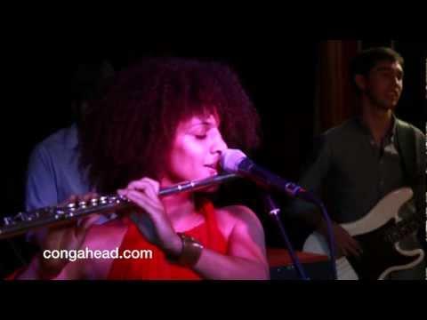 Underground System Afrobeat performs Monsanto