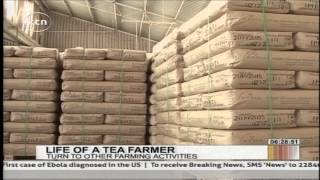 Changing fortunes for tea farmers