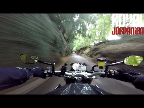 Wall of trees on a BMW S1000Rs