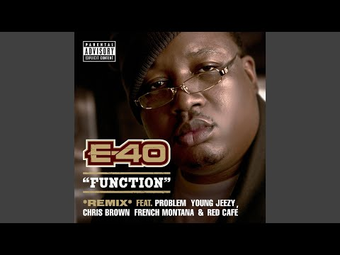 Function (Remix) (feat. Problem; Young Jeezy; Chris Brown; French Montana; Red Café)