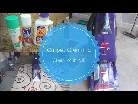 Clean With Me| Do It Yourself Carpet Cleaning| Shampooing Area Rugs