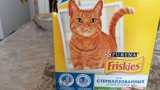 Как отучить кошку драть мебель.
