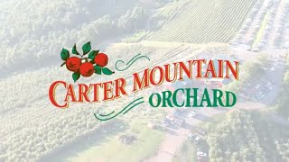 Gambar cover Carter Mountain Orchard The BEST Virginia Sunset - AirBnB Family Ep 02