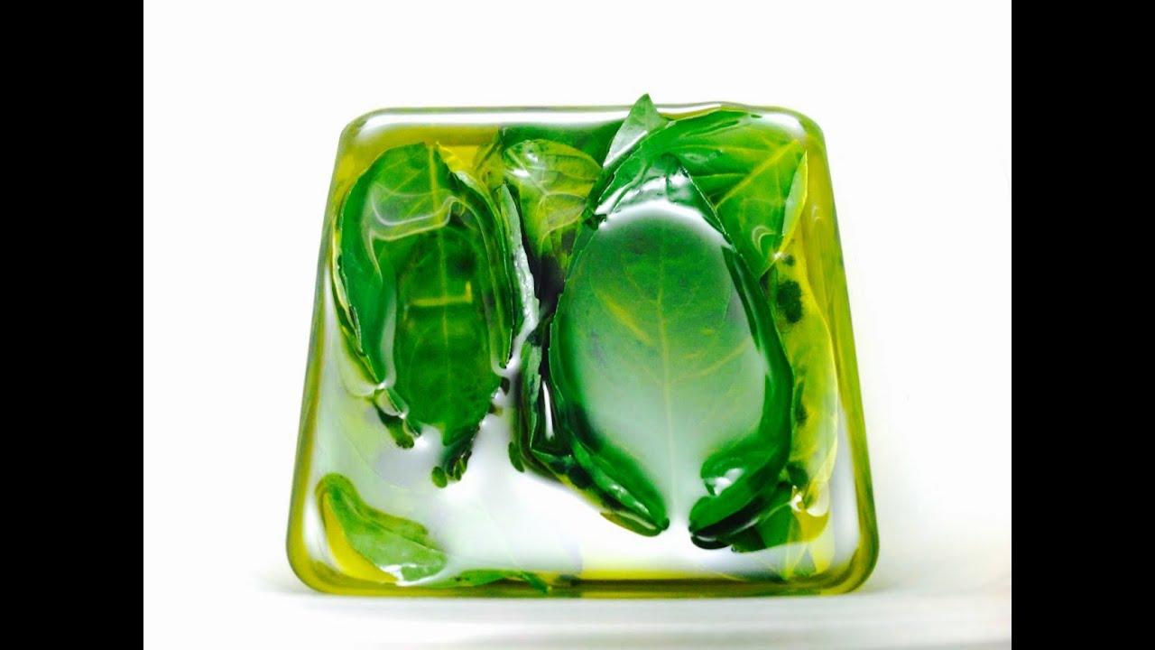 comment conserver le basilic dans l 39 huile d 39 olive hd. Black Bedroom Furniture Sets. Home Design Ideas