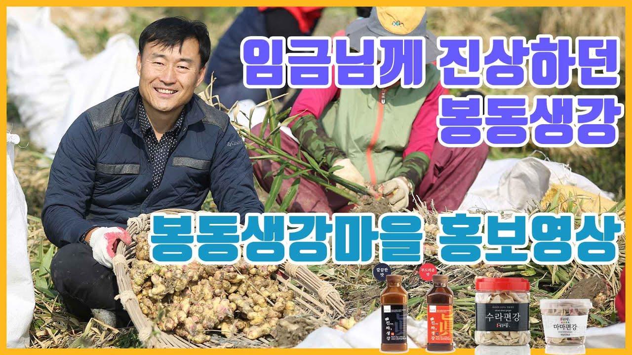 (산들산들TV) 완주 봉동생강마을 소개영상