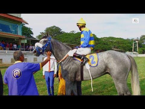Mysore 2000 Guineas 2018 - Sir Cecil