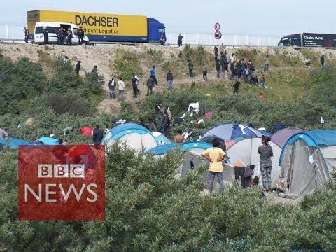 Calais Migrants: What