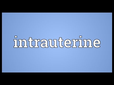 Intrauterine Meaning