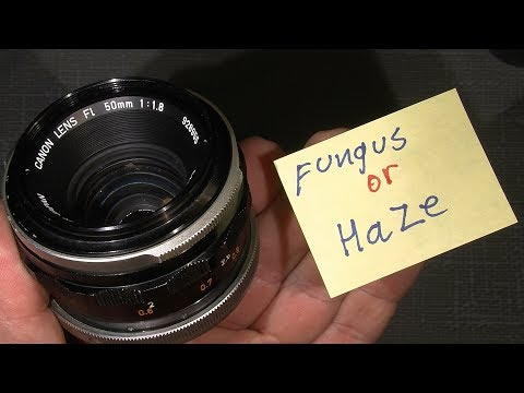 Remove fungus or Haze in Canon FL 50mm 1:1.8_____maybe it will work