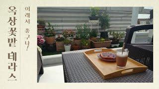 노지월동가능한 꽃자랑과 옥상테라스에서의  티타임