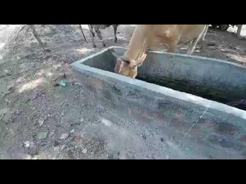Chalatenanago, El Salvador 2017 Part 1