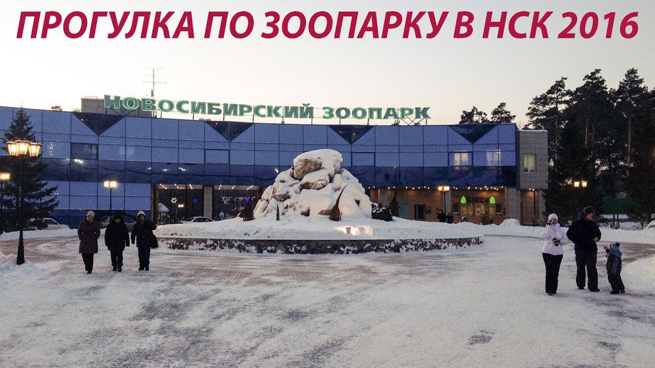 Ураганный ветер с дождем Новосибирск 10.06.2017 - YouTube