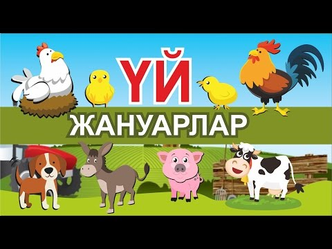 ЖҰМБАҚТАР. Үй жануарлар./ Загадки на кзахском языке. Домашние животные. Жумбактар.