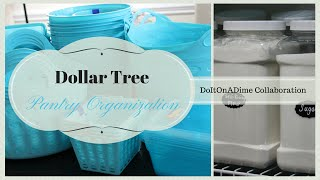 Dollar Tree Pantry Organization | Collab With Doitonadime