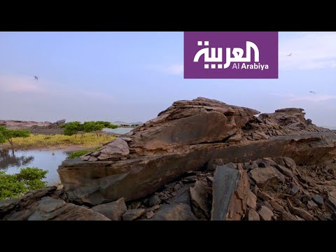 نشرة الرابعة | على خطى العرب.. تاريخ وحقائق لنقوش أثرية منذ 8000 عام  - نشر قبل 2 ساعة