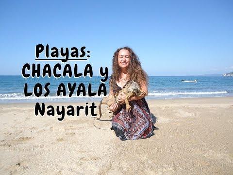 CHACALA Y LOS AYALA NAYARIT - Lorena Lara