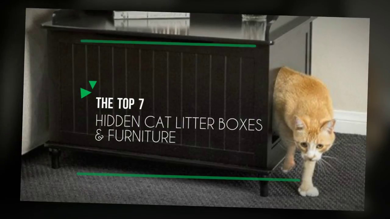 7 Best Cat Litter Boxes Furniture 2017 Youtube