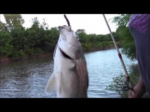 pesca con luna llena
