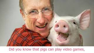 'Babe' actor James Cromwell wants you to stop eating pigs and go vegan