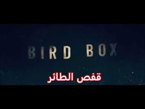فيلم Bird Box كامل مترجم Hd رابط المشاهدة في صندوق الوصف Youtube