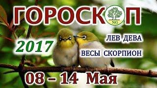 Гороскоп. Прогноз таро на неделю с 08-14 мая 2017 (ЛЕВ - ДЕВА - ВЕСЫ - СКОРПИОН)