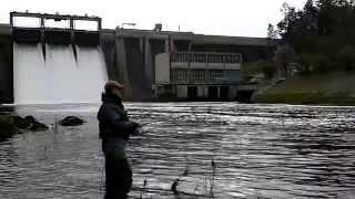 Salmon Fishing Ireland 2014. ( HD )