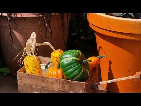 Wooden Fall Harvest Wagon l DIY DollarTree l Crafts l rustic l porch decor Farmhouse