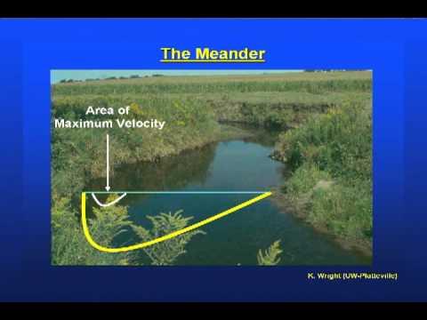 Stream Ecology Basics