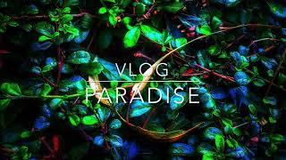 Paradise (เพลงประกอบvlog ไม่มีลิขสิทธิ์)