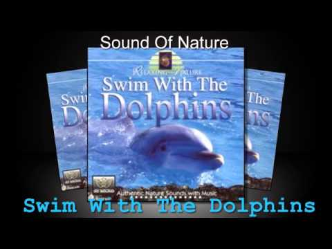 Relaxing Sounds Of Nature  - Swim With The Dolphins  (Full Album)