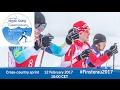 Cross-country sprint   2017 World Para Nordic Skiing Championships, Finsterau