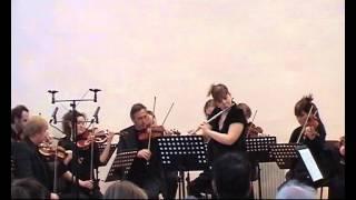 C.P.E. Bach Flute Concerto in D minor H.426 Wq.22, I mov. Allegro.