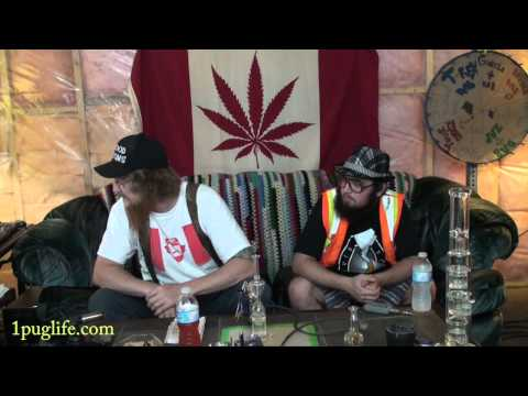THC episode-446 costco flip out