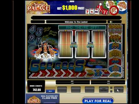 Video Flash casino games