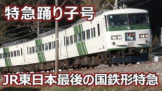 特急踊り子号 国鉄特急型電車185系 ~JR東日本 最後の国鉄車輛による特急の定期運用~ (Old Type Ltd.Express)