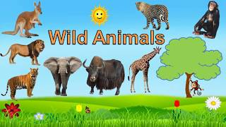 Wild Animals for Kids Learning wild animals Names and Sounds