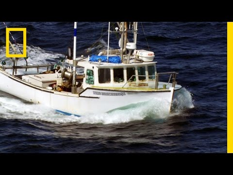 Sometimes, the Bar Bites Back | Wicked Tuna: Outer Banks