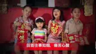 CNY 2014   He Xin Nian