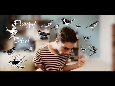 I Hate Flappy Bird  Nicholas Calla