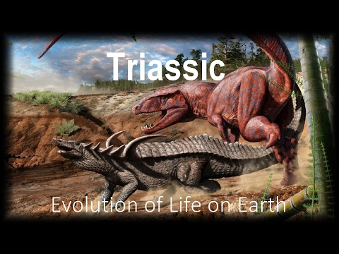 The Evolution of Life part 8 : Triassic