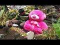 Pemuda Bawa Boneka Ke Makam Kekasihnya Untuk Menepati Janjinya | Video Viral Pemuda Setia