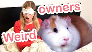 Weird Things Guinea pig Owners Do