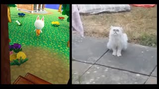 Animal Crossing Memes + Vines VS. Original Meme + Vine | Kawaii Gamer