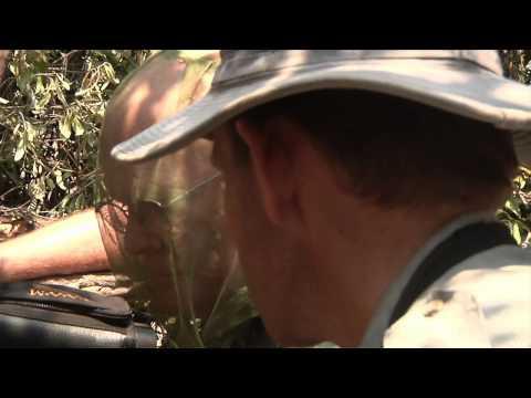 Dallas Safari Club's Tracks Across Africa - Operation Teeth & Claw Part 2