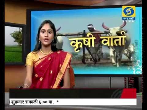 Krishivarta Bajarbhav - 21 May 2018 - कृषीवार्ता बाजारभाव