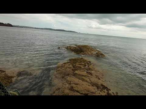HRF Lure Fishing For Wrasse - A Tutorial,  Part 1