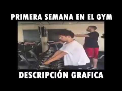 Primera semana en el gym descripcion grafica youtube for En el gimnasio